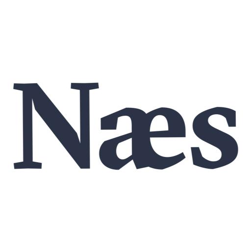 Naes-web logo.jpg